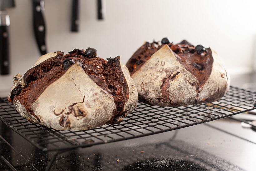 Two chocolate sourdough breads cooling on a wirerack